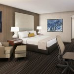 Wyndham Atlanta Galleria Hotel