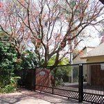 Coral Tree House Foto