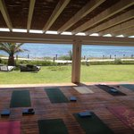  View from the yoga studio