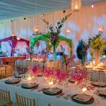 Tables Pink Orchids