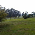  Outlook from cottage verandah