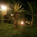  Ijen Resto &amp; Guesthouse at night