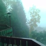 misty morning view from balcony