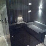 Deluxe room / The bathroom is encased in black perspex.