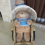 Cute Bear Doll in front of dining room