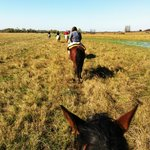  Riding through the Pampas