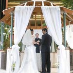 Atrium Wedding Gazebo