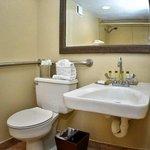 Queen Mobility Accessible Guest Room Bathroom
