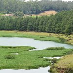 Pykara water fall n lake , Swiss of ooty