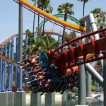Knotts Berry Farm Coaster