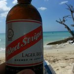 Red Stripe is my new beer