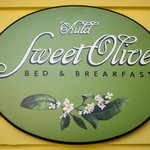 Welcome to Auld Sweet Olive B&B!