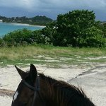 Lush Island great view by Horse back