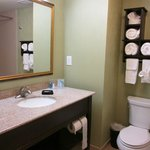 Hampton Inn & Suites Prattville照片