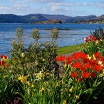  Spring at Lochcarron