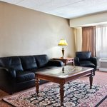  Lviving Room - Executive Suite