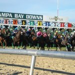 Tampa Bay Downs - 30 miles from hotel