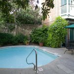 Hotel St. Pierre, French Quarter Hotel, Pool View