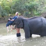  Fun in the river with the elephants