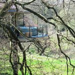 Our Treehouse Through The Trees