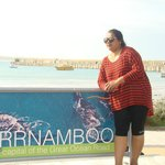  Warnnambool Beach