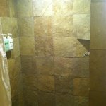 The tiled shower