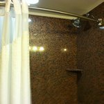 HIX bathroom, curved shower bar