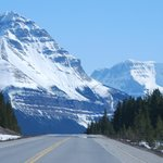  Beautiful scener along the Icefield Parkway!