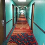  hallway upstairs.  horrible colors but actually clean