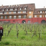 The Hotel and its Vineyards