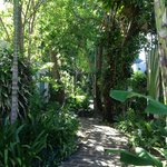 the grounds are beautiful and very tropical