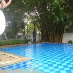  Swimming ppol