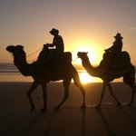 AmoDou CheVaL Horse Trekking & Camel Riding - Day Tours
