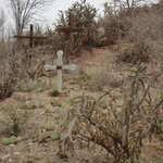  Old Crosses at the corner of the property