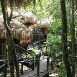  Rainforest Spa Treatment Rooms