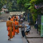 Monks from behind, a respectable distance
