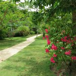  Pathway to jetty from the resort centre