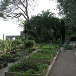  le jardin des dlices du chef