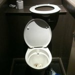 Horrible, dirty and damaged toilets