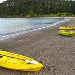  Kayaking to Robertson Island (included)