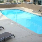 Pool and Pool Deck edged by Palm Trees