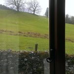  looking out of the bathroom, with sheep