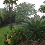  view from the lanai - rainy morning