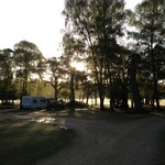  Hollands campsite