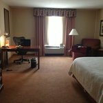 Hilton Garden Inn Philadelphia / Fort Washington resmi