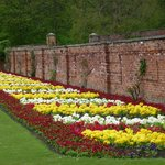 Formal border by the Walled Garden