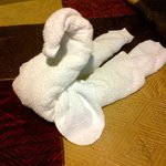  One of those cuba towel animal greeting you on bed.