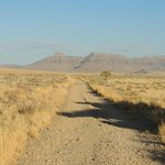 Road to Hoodia Desert Lodge