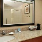 Hampton Inn Tracy Hotel Bathroom
