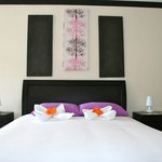  www.hoteltuanisjacobeach.com